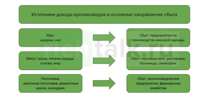 Источники дохода кролиководов и основные направления сбыта продукции