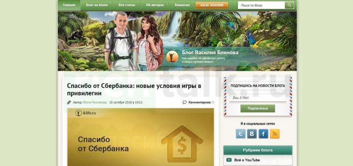 Пример успешного текстового блога по заработку от Василия Блинова